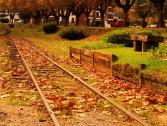 Suba a Serra no Mês de Abril e curta o Outono