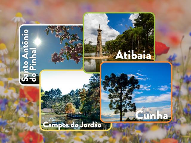 10 belas cidades para visitar na primavera!