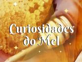 Conheça algumas curiosidades sobre o Mel!