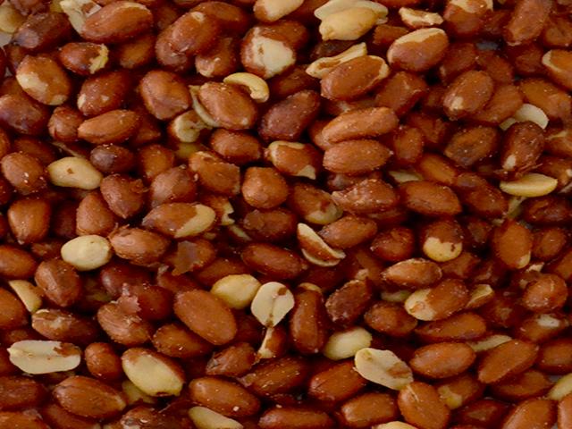 Amendoim Torrado Cavalo Grão