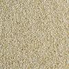Quinoa Grão
