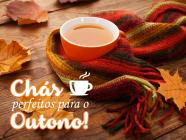 Chás perfeitos para o outono!